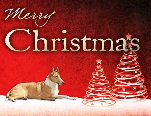 breechristmas