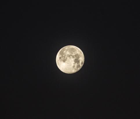moon3183